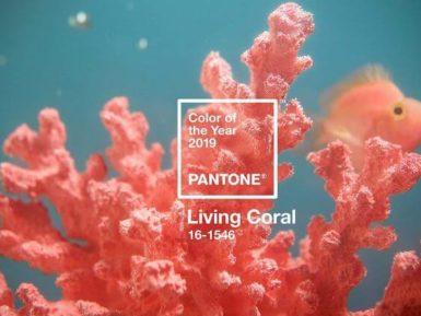 Ideas para decorar con Living Coral, el color del año