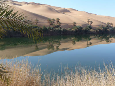 Oasis de Libia