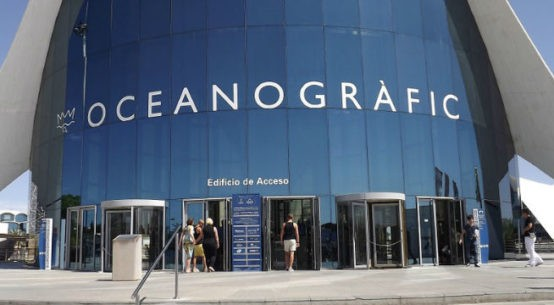 Visita al Oceanogràfic de Valencia