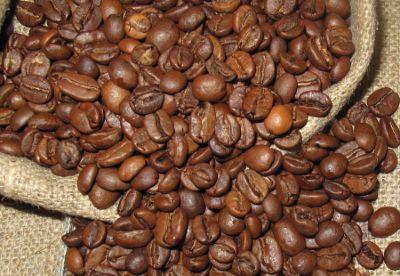 productores de granos tostados de café